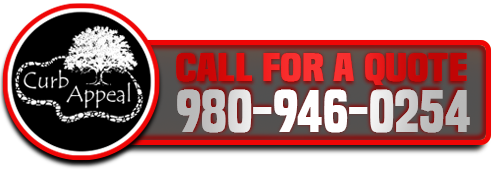 Call 980-946-0254 for Free Quote